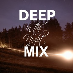 Deep In The Night Mix #2 [Preview]