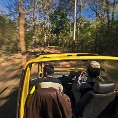 Jungle Jeep Chase