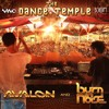 Avalon and Burn in noise (Feat Raja Ram)- The Dance Temple