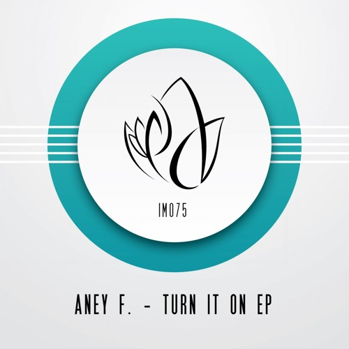Aney F. - Turn It On (Original Mix) - Innocent Music