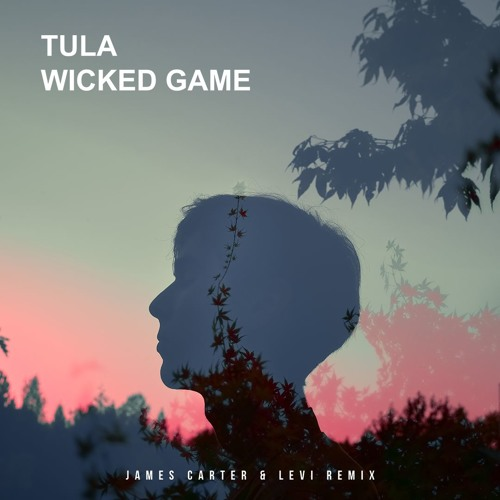 Tula - Wicked Game (James Carter & Levi Remix)