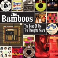 The Bamboos - Step It Up