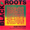 Black Roots - Guidance