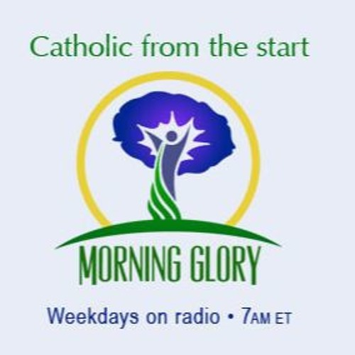 Morning Glory on Friday, November 20, 2015