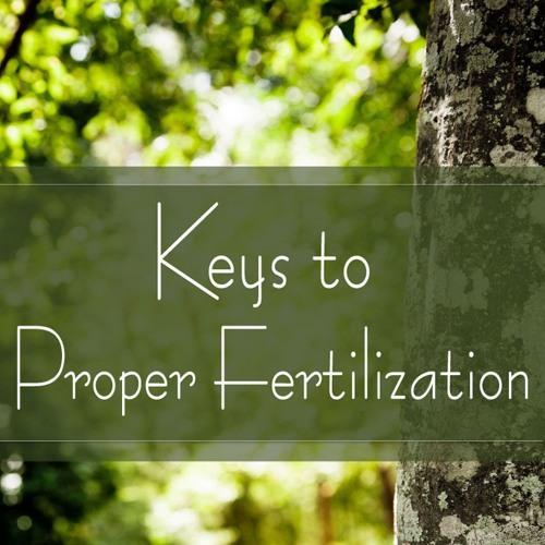 Keys to Proper Fertilization