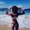 Shaggy - It Wasn't Me (Remix)