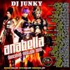 Download DJJUNKY - ANABELLA DANCEHALL MIXTAPE 2K15 Mp3
