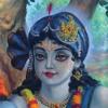 Fame Wealth Of God Vaishanava Siddhanta Mala Series Krishna Bhakti Tattva Nitai1452