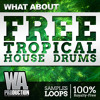 Free Tropical House Drums [Drum Loops, Kick, Claps, Percussion, Cymbals]