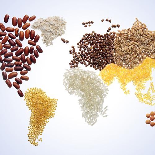 Global Eating, on PRI's The World (public radio) / BBC World Service