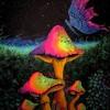 Butterfly (Chord Goblin remix)
