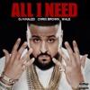 DJ Khaled - All I Need (feat. Chris Brown & Wale)