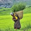 Sa Tha Jang Lu By Rinchen Namgay