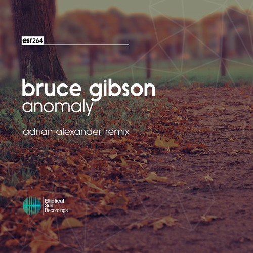 Bruce Gibson - Anomaly ( Adrian Alexander Remix )