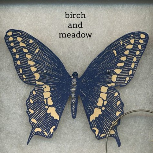 Birch and meadow - Before I became a wind
