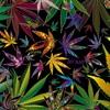 Just Blaze Hip Hop Instrumental Prod By Zizou Mp3