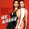 Alexandra Stan Ft Inna & Daddy Yankee - We Wanna (TH.O.M. B. & Andrea Aloigi Edit)**FREE DOWNALOAD**