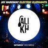 Jay Hardway - Electric Elephants ( Ali Kh Remix )