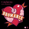 Tim Berg - Seek Bromance (Arath Galvan Remix)