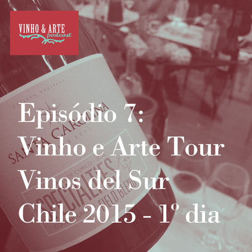 007 - Vinho e Arte Tour - Vinos del Sur - Chile 2015 - dia 1