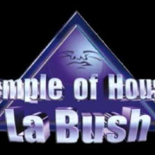 Ceelux - La Bush Memories
