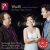 J WOELFL, Piano Sonata In B Minor, Op. 38- I. Allegro - Steven Vanhauwaert, piano