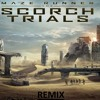 Maze Runner- The Scorch Trials - Hallucination  (Remix)