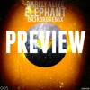Barely Alive - Elephant (DR3KORD Remix) [PREVIEW].mp3