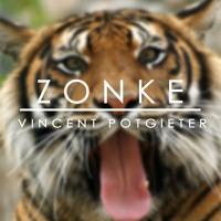 Zonke // Riky Rick Type Beat (Free Download)