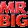 `mr. Big - Take Cover (Backing Track)