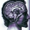 Conscient Soul.mp3