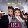Gulaabo Remix - Chas In The Mix