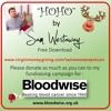 Hoho - Charity Christmas Song.  Please Donate.