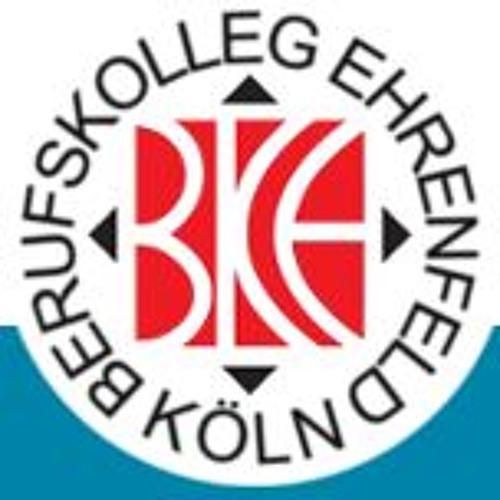 SchülerInnen des Berufkollegs Ehrenfeld in Bursa/Türkei