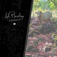 Art Pleasley - Crooked
