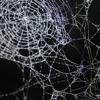 Walking Into Cobwebs (HBO's The Leftovers: Meg's Theme)
