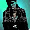 Avicii feat Dan Tyminski - Hey Brother (Moody