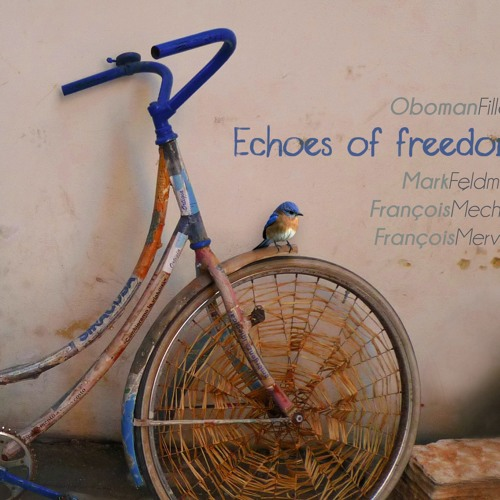 Jean-Luc Oboman Fillon - Echoes of Freedom