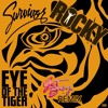 Survivor Eye Of The Tiger Get Busy Remix Mp3