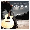 Making Memories Of Us - Zingga