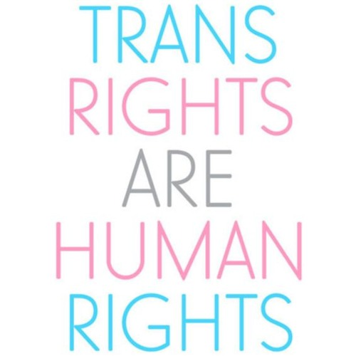 Sex, Drugs and How We Roll- Human Rights + Trans Folks