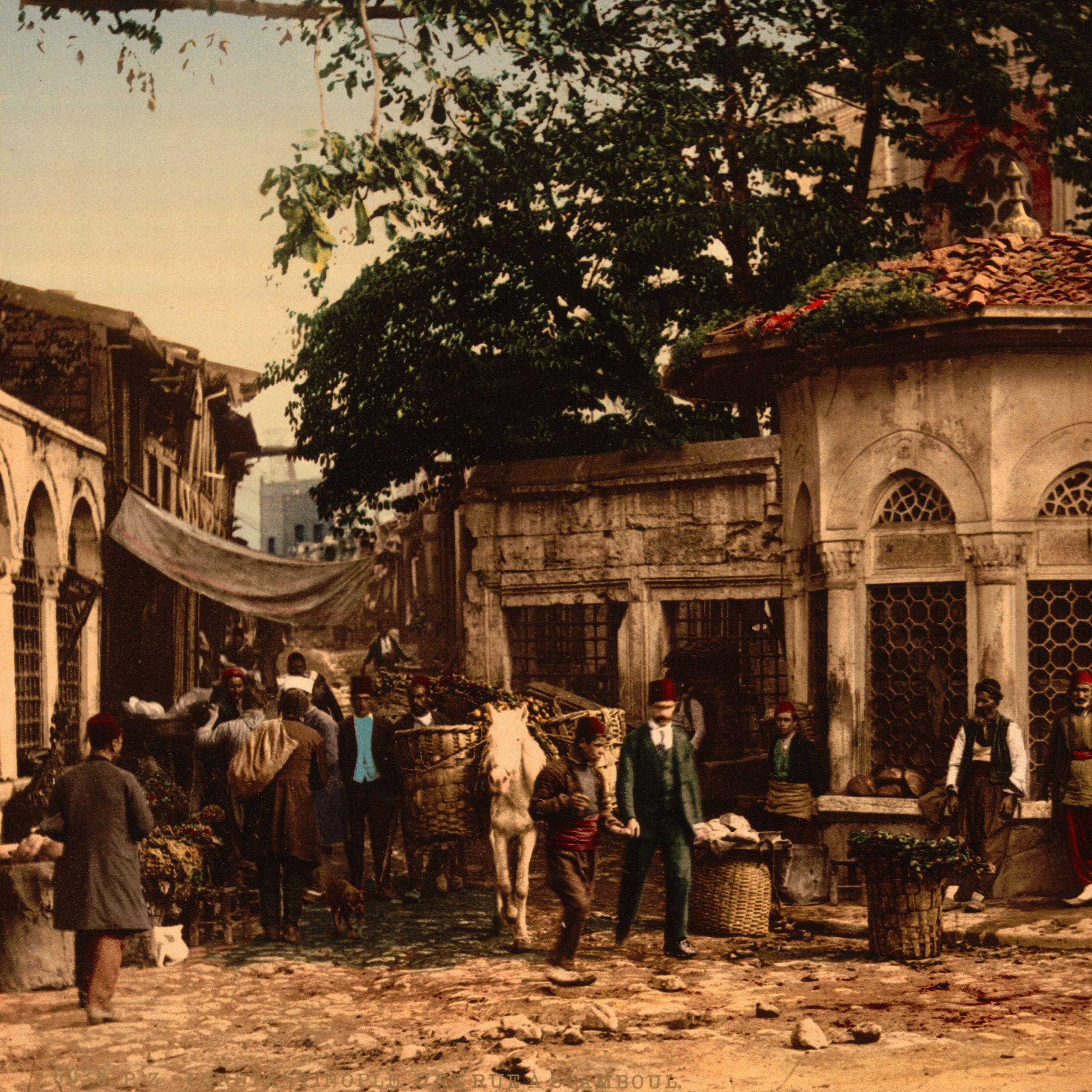Social Histories of Ottoman Istanbul | Ebru Boyar & Kate Fleet