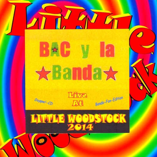 Live at Little Woodstock 07.09.2014