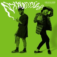 Nxworries (Knxwledge & Anderson Paak) - Link Up