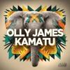 Olly James - Kamatu (Amir Remix) [#62 Psytrance Chart]