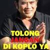 KehiLangaN Versi DJ KOPLO mp3