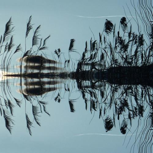 Twilight On The Still Water
