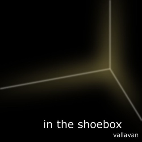 in the shoebox