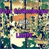Felix Stolzenberger B2B Lampe @ Wasserschaden Hamburg 27.11.15