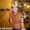 Las Cuatro Fiestas - Diomedes Díaz Version Remix DjJesus 2015 Clean Portada del disco